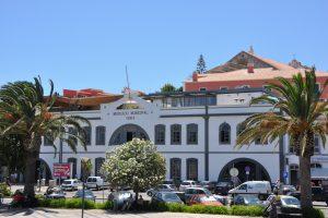 Markthalle-Altstadt-Lagos-Photo-by-Portal-do-Tourismus-do-Algarve